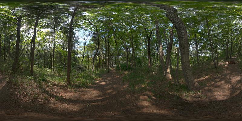 HDRI_nature014